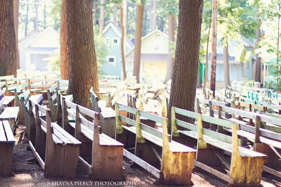 Berwick chairs